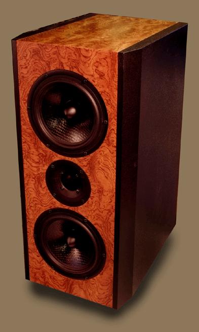 Seas Bragi MTM Speaker Kit Photo