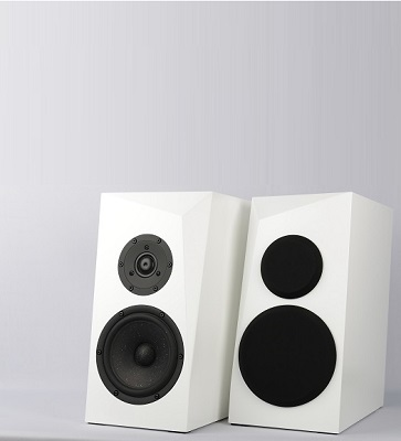 Satori Ara 2-Way Speaker Kit Photo